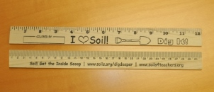 Soils Rulers - Pack of 25